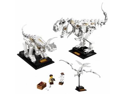 LEGO 21320 - Кости динозавра