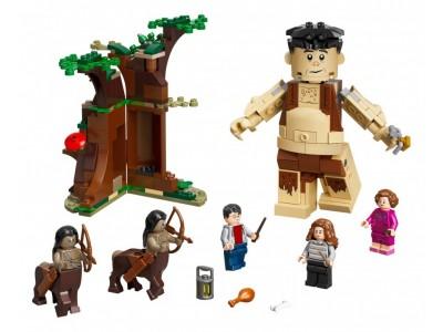 LEGO 75967 - Запретный лес Встреча Умбриджа